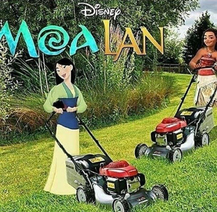 Moalan